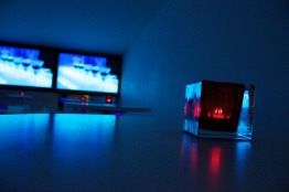 stefano fake - biennale arte contemporanea 08