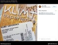 KLIMT EXPERIENCE fake_00228