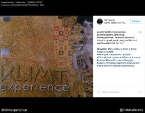 KLIMT EXPERIENCE fake_01390