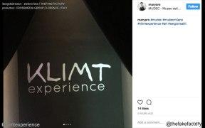 KLIMT EXPERIENCE - stefano fake _00674