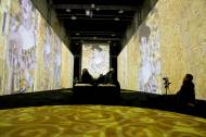 THE FAKE FACTORY KLIMT EXPERIENCE ROMA_00041