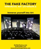 IMMERSIVE ART EXPERIENCE_00114