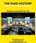 IMMERSIVE ART EXPERIENCE_00130