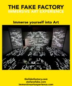 IMMERSIVE ART EXPERIENCE_00132