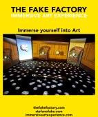 IMMERSIVE ART EXPERIENCE_00147