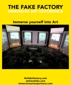 IMMERSIVE ART EXPERIENCE_00204