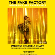 THE FAKE FACTORY - THE MIRROR ROOM IMMERSIVE ART_00160