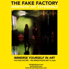 THE FAKE FACTORY - THE MIRROR ROOM IMMERSIVE ART_00417