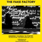 the fake factory the poetry room immersive art experience_00094