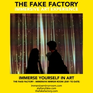 THE FAKE FACTORY immersive mirror room_00545