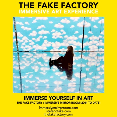 THE FAKE FACTORY immersive mirror room_00577