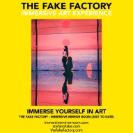 THE FAKE FACTORY immersive mirror room_00805