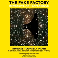 THE FAKE FACTORY immersive mirror room_00915