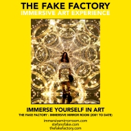 THE FAKE FACTORY immersive mirror room_00922