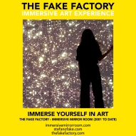 THE FAKE FACTORY immersive mirror room_00965