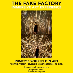 THE FAKE FACTORY immersive mirror room_01009