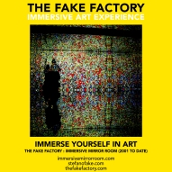 THE FAKE FACTORY immersive mirror room_01016