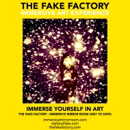 THE FAKE FACTORY immersive mirror room_01018