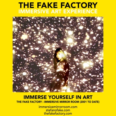 THE FAKE FACTORY immersive mirror room_01019