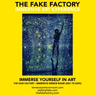 THE FAKE FACTORY immersive mirror room_01050
