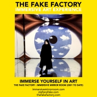 THE FAKE FACTORY immersive mirror room_01080