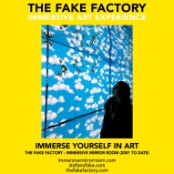 THE FAKE FACTORY immersive mirror room_01092
