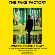 THE FAKE FACTORY immersive mirror room_01117