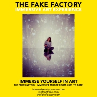 THE FAKE FACTORY immersive mirror room_01144