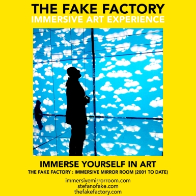 THE FAKE FACTORY immersive mirror room_01172