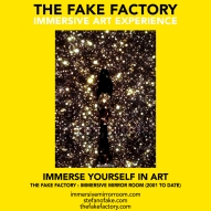 THE FAKE FACTORY immersive mirror room_01211