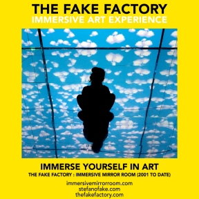 THE FAKE FACTORY immersive mirror room_01268