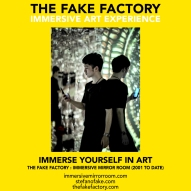 THE FAKE FACTORY immersive mirror room_01304