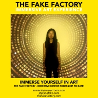 THE FAKE FACTORY immersive mirror room_01315