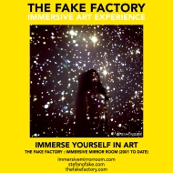 THE FAKE FACTORY immersive mirror room_01324