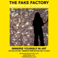 THE FAKE FACTORY immersive mirror room_01344