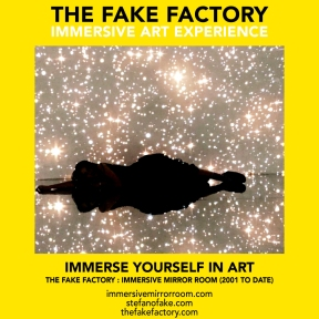 THE FAKE FACTORY immersive mirror room_01352