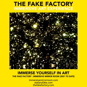 THE FAKE FACTORY immersive mirror room_01353