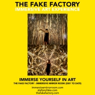 THE FAKE FACTORY immersive mirror room_01368