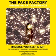 THE FAKE FACTORY immersive mirror room_01381