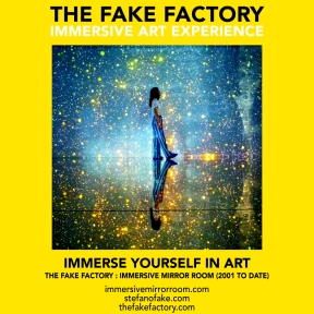 THE FAKE FACTORY immersive mirror room_01410