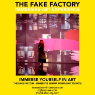 THE FAKE FACTORY immersive mirror room_01418