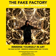 THE FAKE FACTORY immersive mirror room_01419