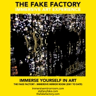 THE FAKE FACTORY immersive mirror room_01421