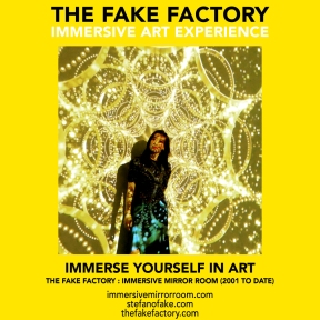 THE FAKE FACTORY immersive mirror room_01428