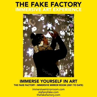 THE FAKE FACTORY immersive mirror room_01443