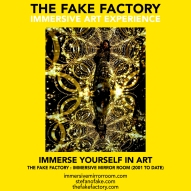 THE FAKE FACTORY immersive mirror room_01497