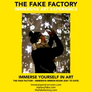 THE FAKE FACTORY immersive mirror room_01520