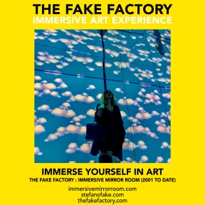 THE FAKE FACTORY immersive mirror room_01524