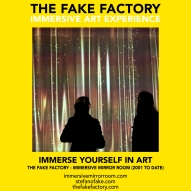 THE FAKE FACTORY immersive mirror room_01530