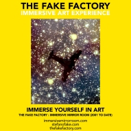 THE FAKE FACTORY immersive mirror room_01533